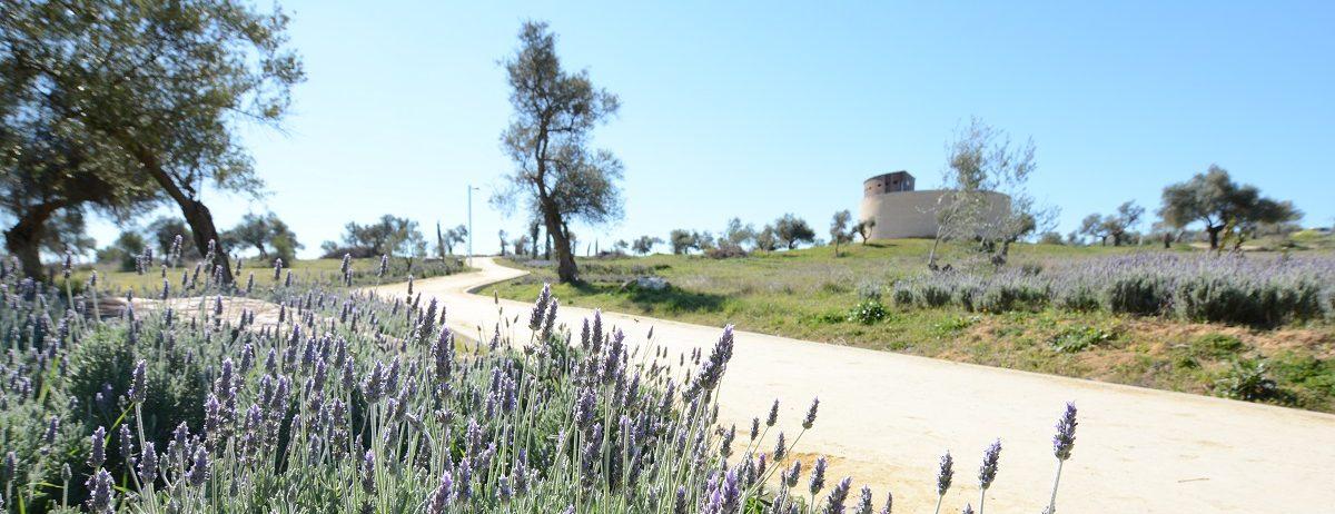 Parque Zaudín de Tomares